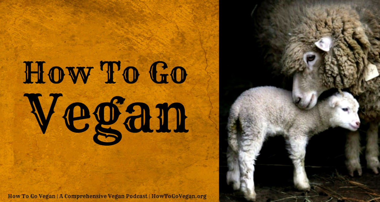 How To Go Vegan Podcast : A Comprehensive Resource for Those Interested in Becoming Vegan